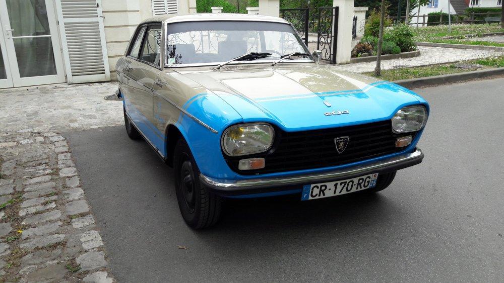 Peugeot204_TA2019_3_0.jpg