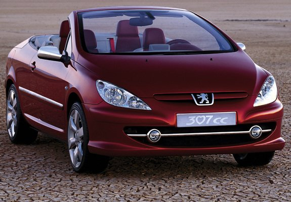 peugeot_307_2002_pictures_2_b.jpg