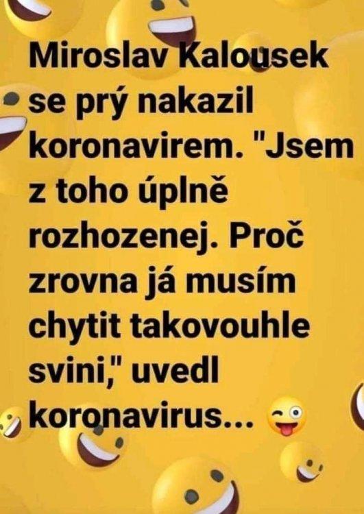 FB_IMG_1585476827551.jpg