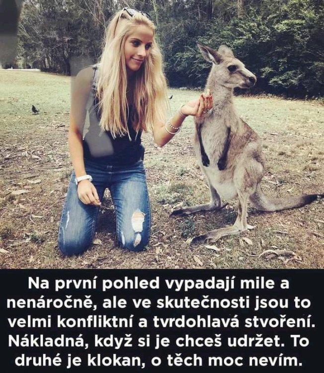 FB_IMG_16175199169312492.jpg