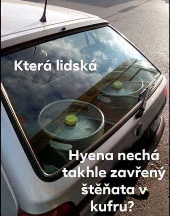 obrazek.png