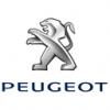 PEUGEOTIK307
